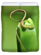 Banana Palm Frond Ready To Unfurl Duvet Cover