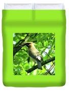 Bandit Bird Duvet Cover
