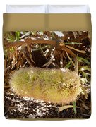 Banksia Baueri Duvet Cover