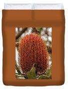 Banksia Serrata 2 Duvet Cover
