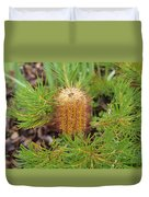 Banksia Spinulosa Duvet Cover