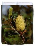 Banksia Syd01 Duvet Cover