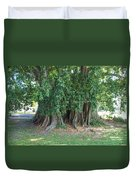 Banyon Tree Duvet Cover