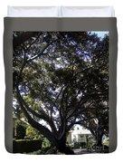 Baobab Trees In Los Angeles Duvet Cover