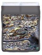Bar-backed Partridge 2 Duvet Cover