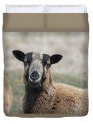 Barbados Blackbelly Sheep Portrait Duvet Cover