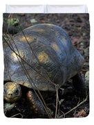 Barbados Wildlife Reserve-red Footed Tortoise #1 Duvet Cover by PJ Boylan