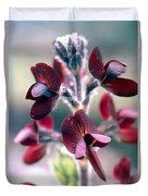 Barbed Thermopsis Or Black Pea Duvet Cover