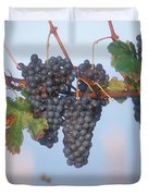 Barbera Grapes Ready For Harvest South Duvet Cover