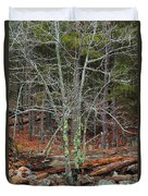 Bare Tree And Boulders In Mark Twain Forest Duvet Cover