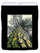 Bark Up The Tall Pine Tree Abstract In Felicina  Louisiana Duvet Cover