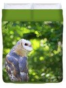Barn Owl Looking Skyward Duvet Cover