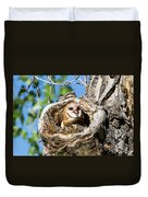 Barn Owl Owlet Says Hello To The World Duvet Cover
