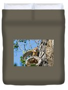 Barn Owl Owlet Stretches Duvet Cover
