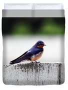 Barn Swallow At Fort Larned Duvet Cover