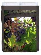 Barnyard Grapes Duvet Cover