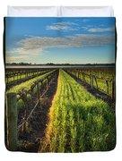 Barossa Vineyard Morning Duvet Cover