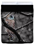 Barred Owl Hungry  Duvet Cover