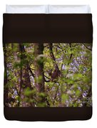 Barred Owl In The Forest Duvet Cover