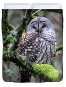 Barred Owl In Tree Duvet Cover