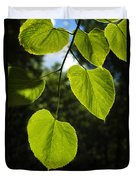 Basswood Leaves Against Dark Forest Background Duvet Cover