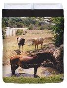 Bathing Horse Duvet Cover