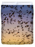 Bats At Bracken Cave Duvet Cover