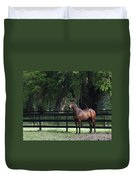 Bay Thoroughbred Duvet Cover