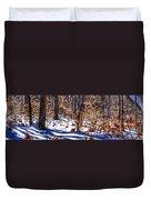 Beach Tree's In Winter Duvet Cover