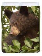 Bear Cub In Apple Tree1 Duvet Cover