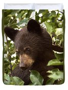 Bear Cub In Apple Tree2 Duvet Cover