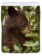 Bear Cub In Apple Tree3 Duvet Cover