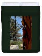 Bear Watch Duvet Cover