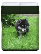 Beautiful Alusky Puppy Dog Walking Through Thick Green Grass Duvet Cover
