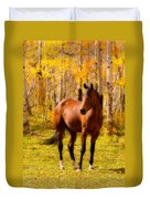 Beautiful Autumn Horse Duvet Cover