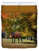 Beautiful Bay Horse In Fall Duvet Cover
