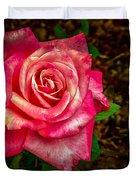 Beautiful Bicolor Rose Duvet Cover