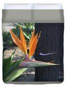 Beautiful Bird Of Paradise Flower In Full Bloom  Duvet Cover