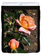 Beautiful Bloom Of The Rose Atlantic Star Duvet Cover