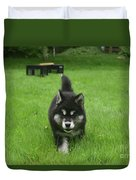 Beautiful Bold Two Month Old Alusky Puppy Dog Duvet Cover