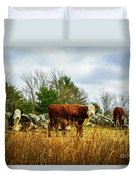 Beautiful Bovine 1 Duvet Cover