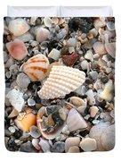Beautiful Broken Shells Duvet Cover