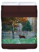 Beautiful Brown Horse Duvet Cover