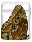 Beautiful Butterfly Wings Of Meadow Brown Isolated Duvet Cover