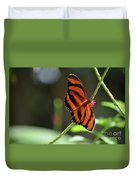 Beautiful Color Patterns To An Oak Tiger Butterfly  Duvet Cover