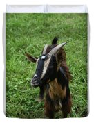 Beautiful Face Of A Billy Goat With Tan And Black Silky Fur Duvet Cover