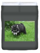Beautiful Face Of A Black And White Alusky Puppy Duvet Cover
