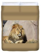 Beautiful Face Of A Lion In The Warm Sunshine Duvet Cover
