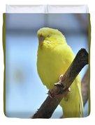 Beautiful Face Of A Yellow Budgie Bird Duvet Cover