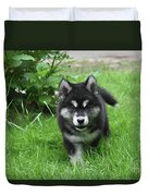 Beautiful Face Of An Alusky Puppy Dog In Thick Green Grass Duvet Cover